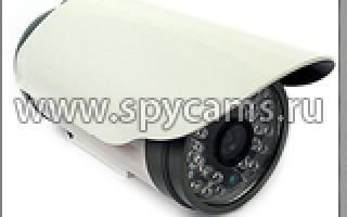 Купольная камера с датчиком движения и записью